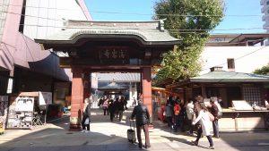 菊まつり高岩寺